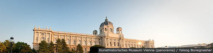 Kunsthistorisches Museum Vienna (panorama)