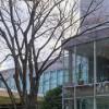 至近距離から繊細さをじっくり鑑賞!上野の森美術館で「肉筆浮世絵-美の競艶」開催。