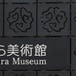 師走の桜、新春の桜。東京・中目黒の郷さくら美術館で「彩図鑑 中島千波の世界」